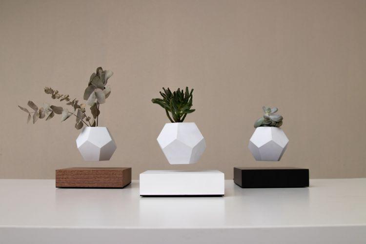 Dekoratyvinis vazonėlis ,,Lyfe